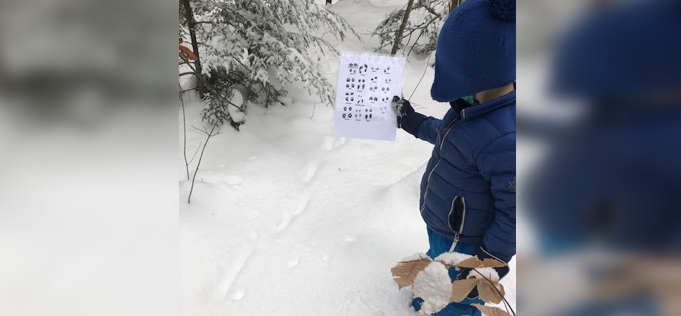 student identifying animal tracks